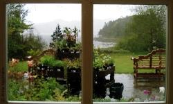 Fensterblick in den Regen über Inverewe Gardens