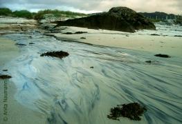 An der Küste von Arisaig