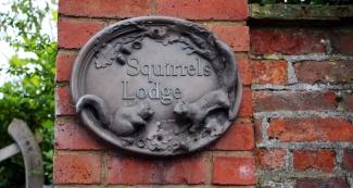 Impressionen aus England: Squirrels lodge